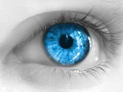 Tek Göz