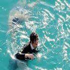 Denize Düşmek