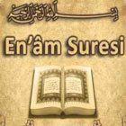 Enam Suresi