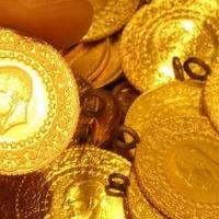 Altın Bulmak