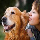 Köpek Sevmek